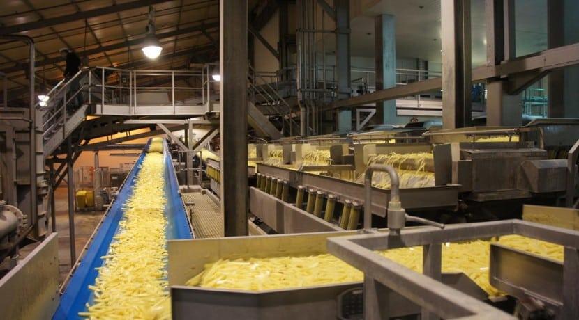 Frites-usine-Agroalimentaire-immobilier-investissement-Nord-pas-de-calais-agroimmo.fr