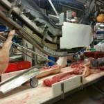 Abera Abattoir Bretagne Usine Agroalimentaire