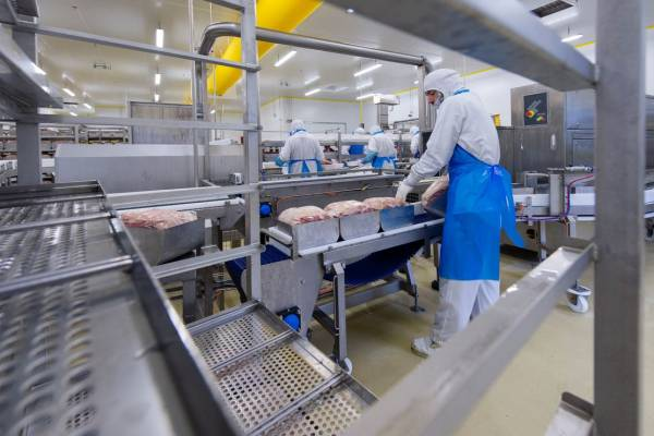 Euralis Charcuterie Yffiniac Bretagne usine agroalimentaire cotes d'armor