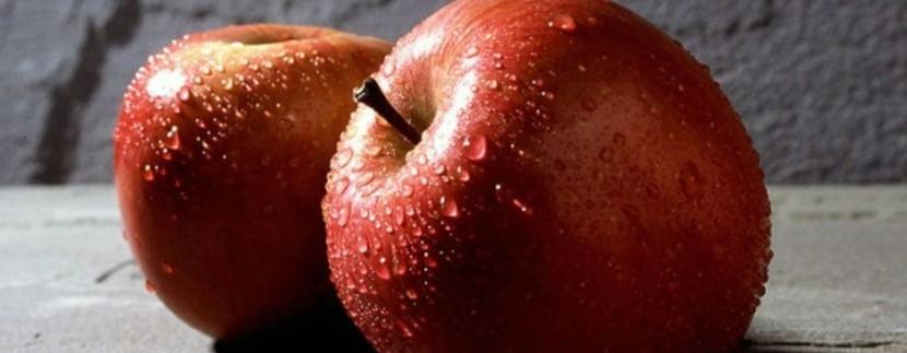 Cofruid'Oc Montpellier agroalimentaire usine plateforme logistique stocke frais