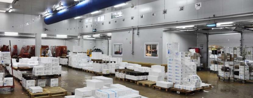Entrepot plateforme logistique froid positif frigorifique Lyon Mions Corbas