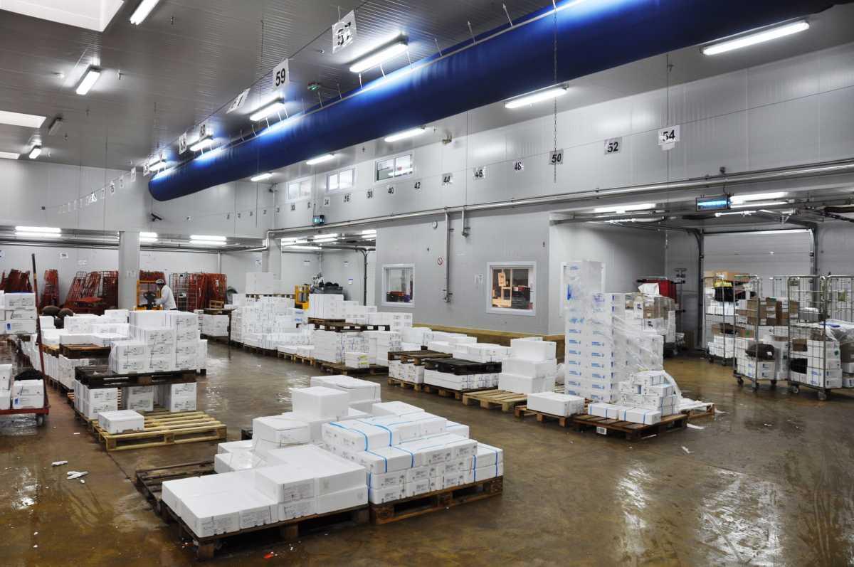Entrepôt frigorifique froid positif, plateforme logistique 2 450 m² – Lyon – Corbas – Saint-Priest – Mions – Vénissieux – Rhône