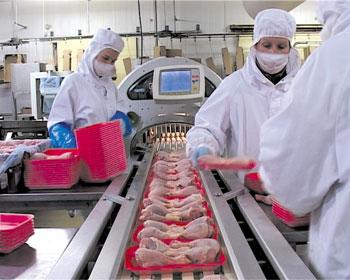 Terrena volaille agroalimentaire Ancenis Loire Atlantique usine Gastronome