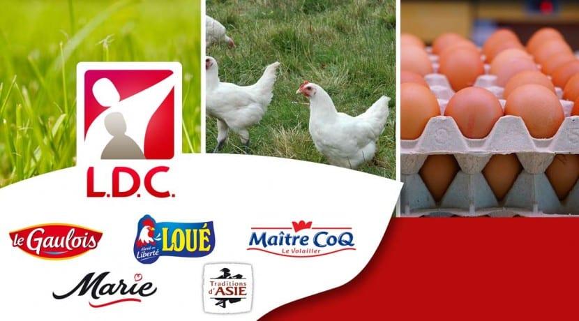 LDC Volaille Agroalimentaire usine Sarthe