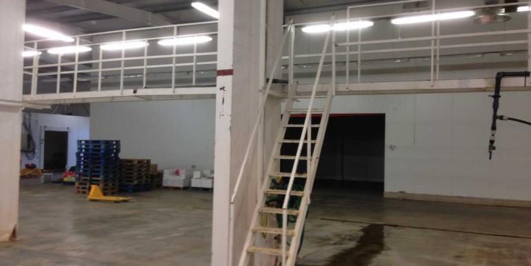 Entrepôt frigorifique positif 800 m2  sec 1 800 m2  Perpignan  Pyrénées Orientales