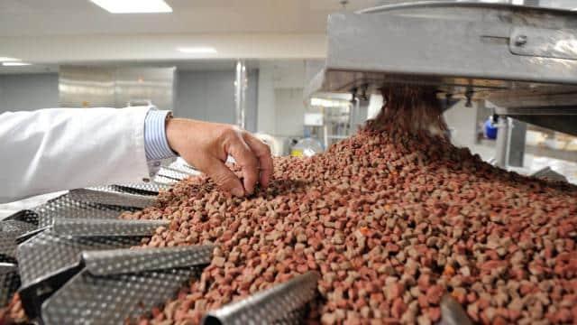 SOPRAL Pet Food Agroalimentaire Rennes Bretagne Pléchatel Investissement usine