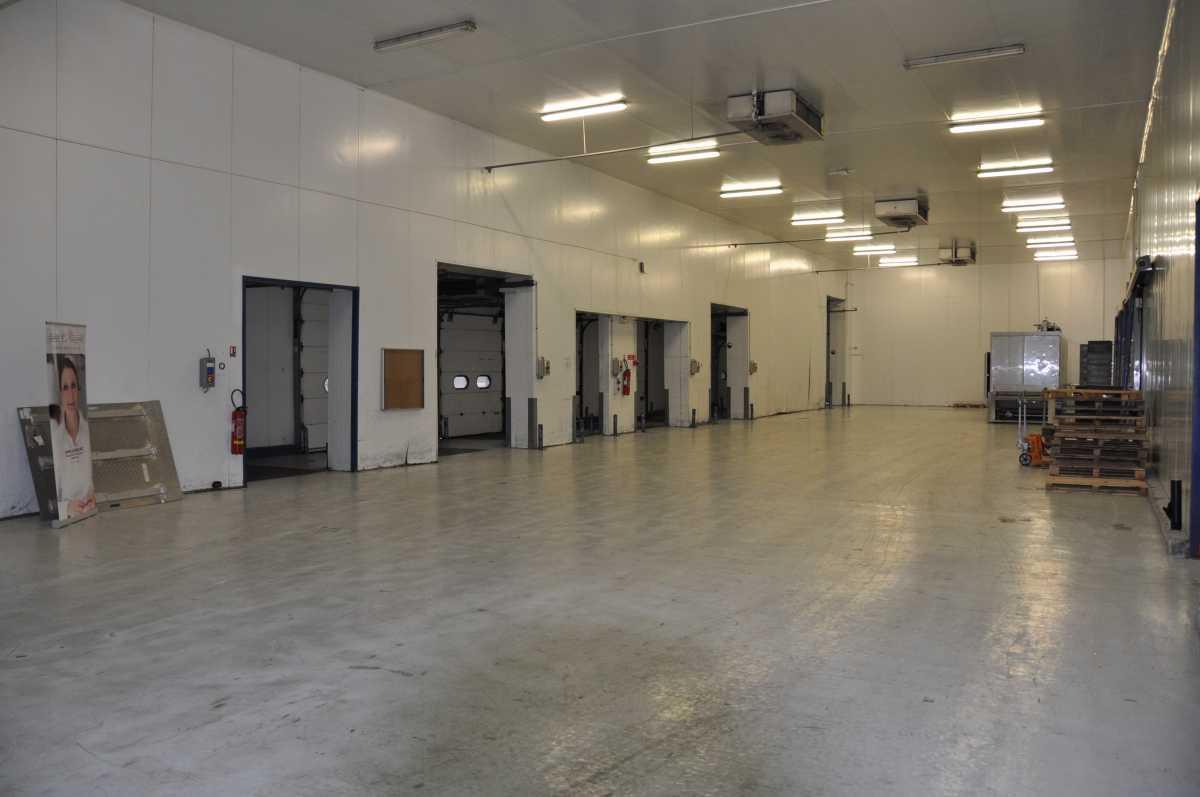 Entrepôt frigorifique froid positif / sec 3 700 m² en zone industrielle: Rungis – Paris – Ouest