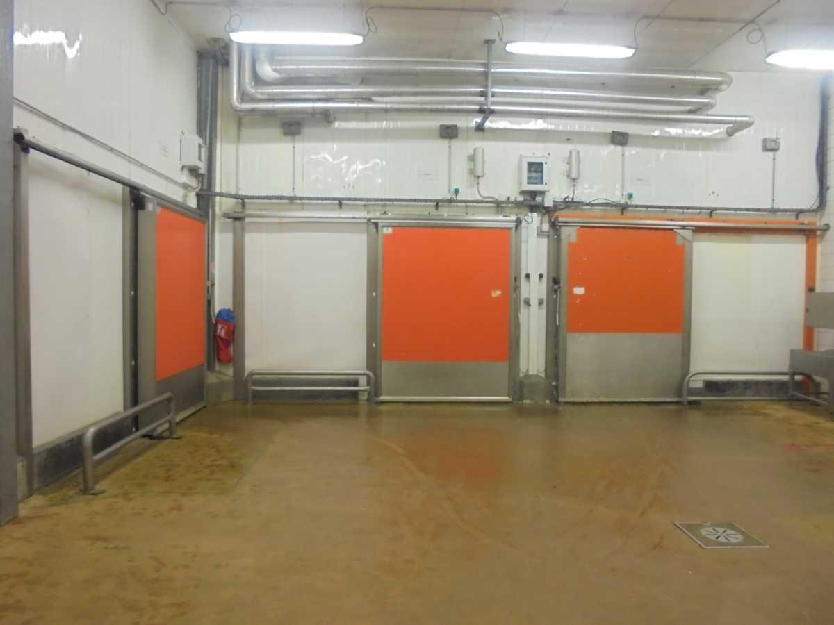 Entrepôt frigorifique / Usine Agroalimentaire positif 12 000 m² divisibles Rennes – Bretagne
