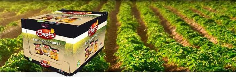 Brets Altho investissement agroalimentaire usine bretagne morbihan