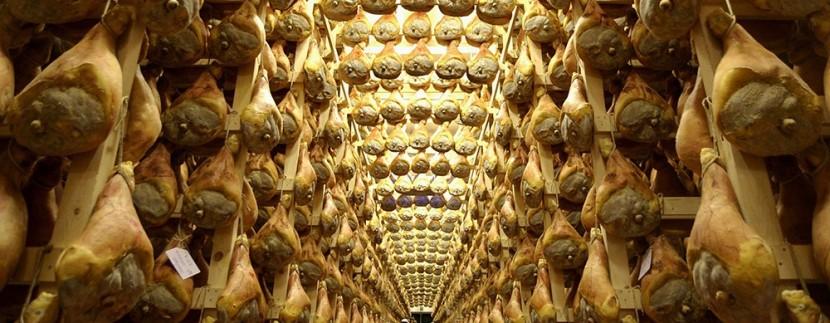 Agroalimentaire usine entrepot Amundi investissement