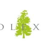 Solexia Agroalimentaire usine investissement