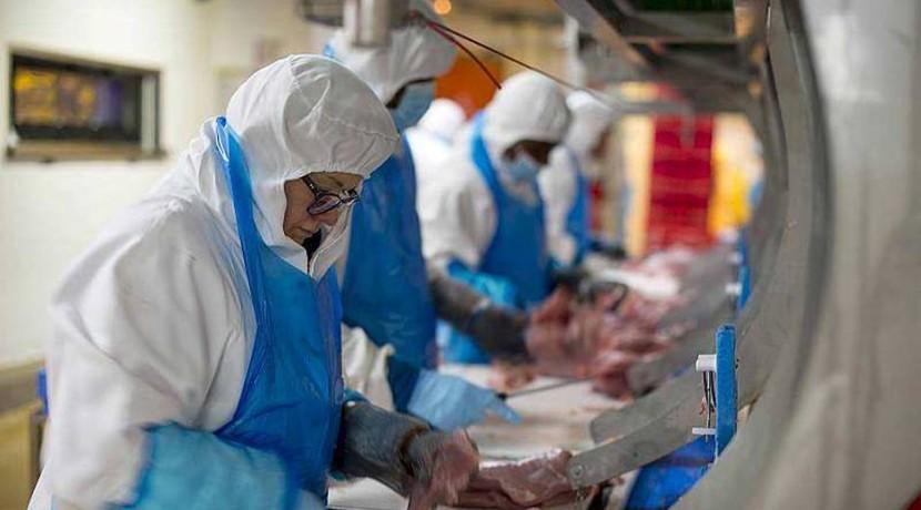 LDC usine volaille vendee investissement fusion acquisition