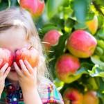 Florac - Saint-Mamet investissement agroalimentaire fusion acquisition usine