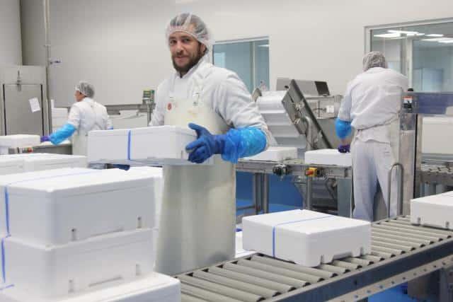 Les Viviers de Saint-Marc Saint-Quai Portrieux Bretagne agroalimentaire usine mareyage investissement