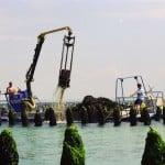 KERMARE MERICQ produits de la mer agroalimentaire fusion acquisition investissement normandie