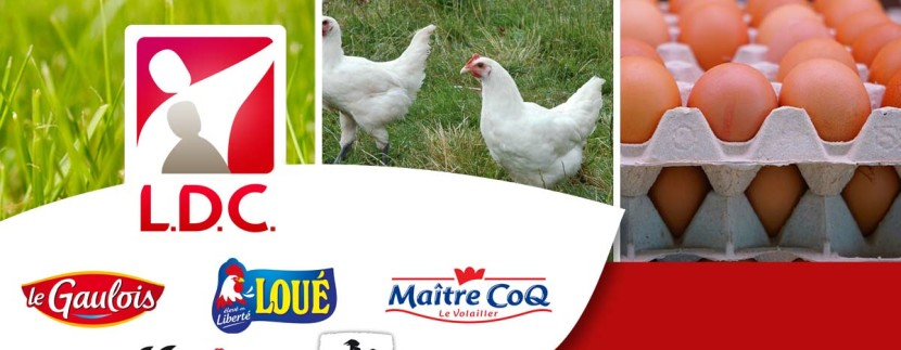 ldc-volaille-agroalimentaire-usine-sarthe