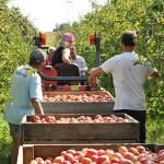coteaux-nantais agroalimentaire nantes usine investissement