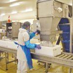 SOCOREX Maréee Atelier usine agroalimentaire Concarneau Bretagne Investissement