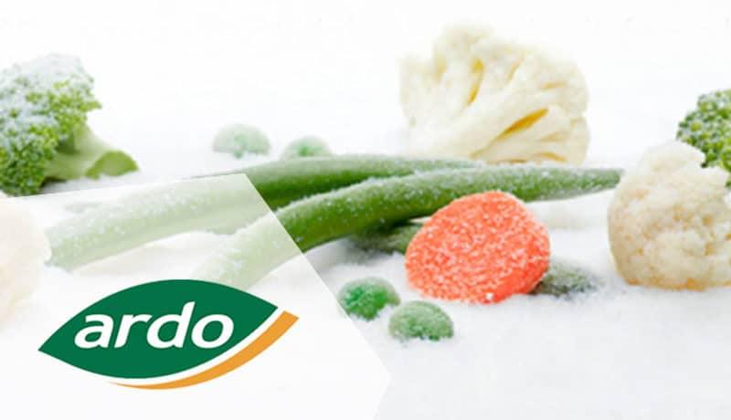 Ardo usine agroalimentaire investissement legumes surgelés Bretagne Cotes d'Armor