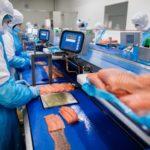 Meralliance agroalimentaire investissement usine saumon Quimper Bretagne